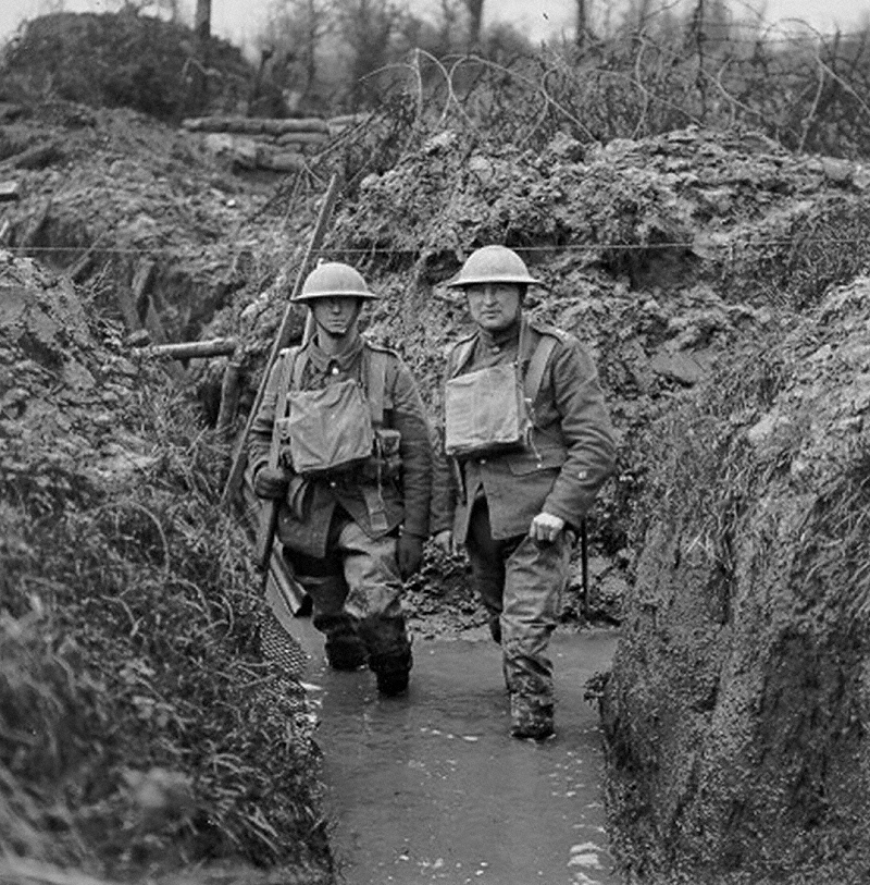 world war i from both trenches essay